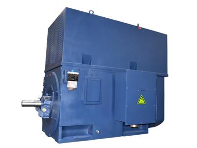 马拉松高压电机-HAA系列